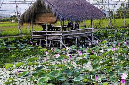 Đây là nơi khách có thể nghỉ ngơi, ăn uống với các món dân dã.